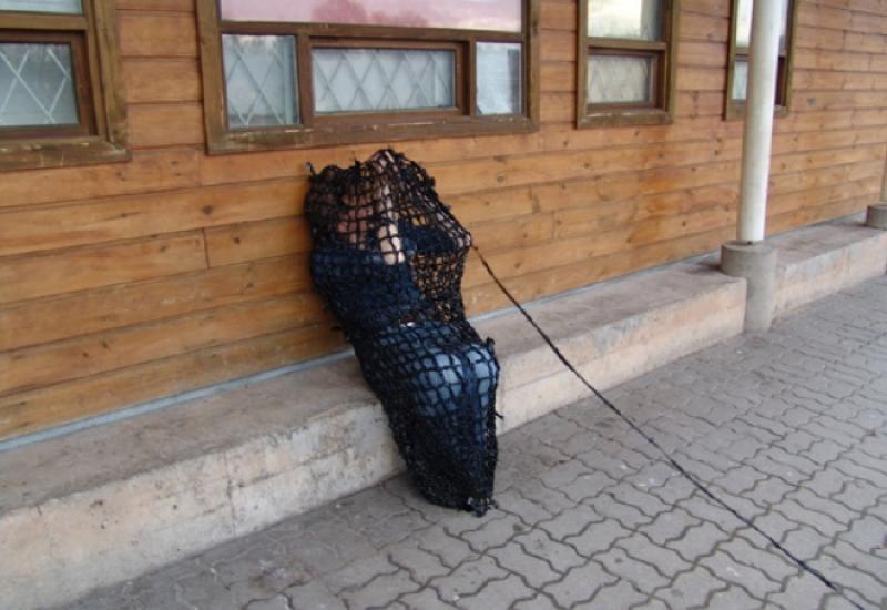 05_BotB_Tartu2